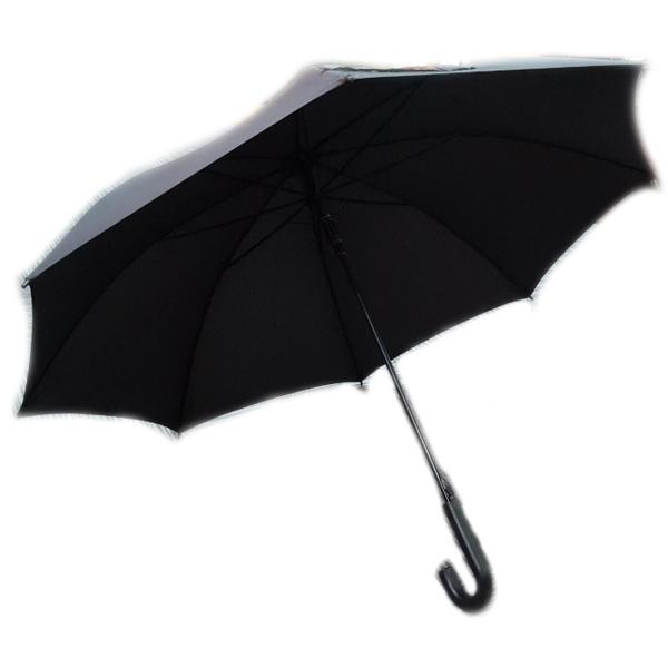 Regular Umbrella